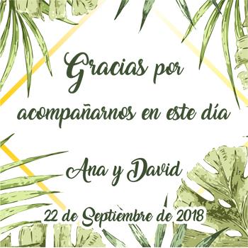 Protegido: Ana y David (22-Septiembre-2018)